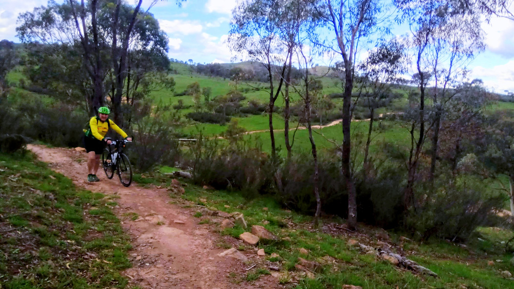Centenary Trail, Tuggeranong to Kambah Pool