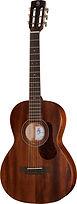 Western Gitarre