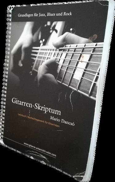 Gitarrenunterricht Wien, Gitarreblehrer Wien