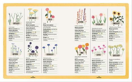 spread bloemen.png