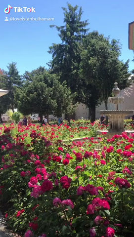 Visit Istanbul Topkapi Palace