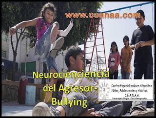 Neurociencia del Agresor-Bullying ( el lugar en el cerebro donde nace de la intimidación)