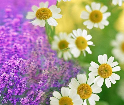 Organic Lavender-Chamomile Bath Salts