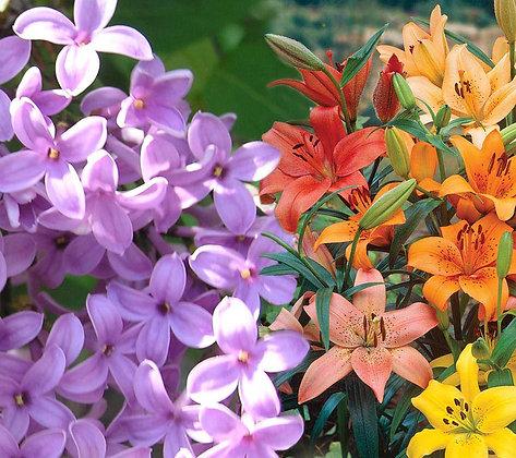 Lilac & Lilies Bath Salts
