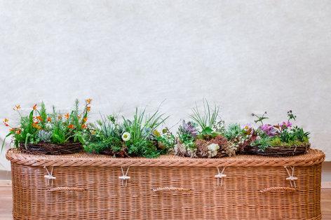 Living wreaths start from £80