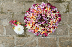 Party flower mandalas