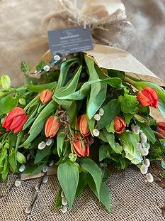 feb tulips.JPG
