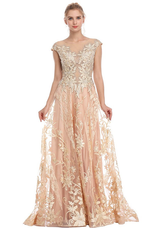 Embroidered Tulle Overlay A line Gown