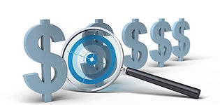 Pricing & Cost Differences-Professional
