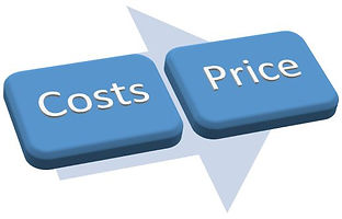 Pricing & Costs-Professional Services Co