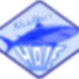 Stadtseehaie.jpg