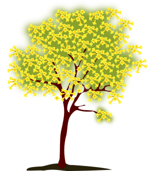 women caregiver support tree logo_edited