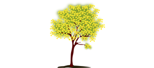women_caregiver_support_tree_logo3.png