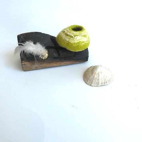 Miniature Lime Pod on Charred Driftwood with Shel and Feather