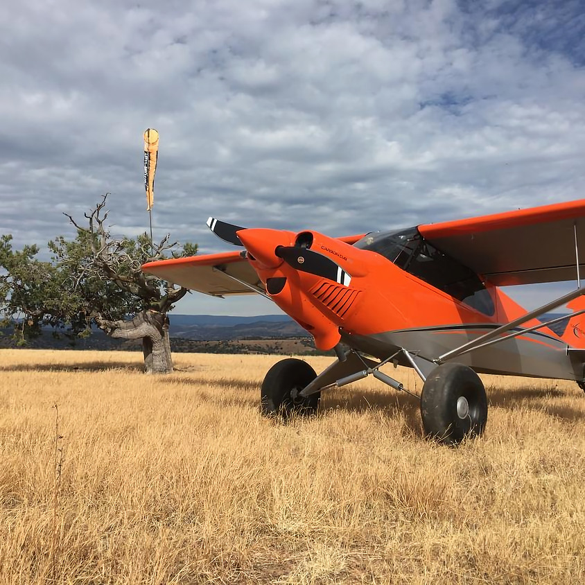 Building A Carbon Cub with Mike Wolf