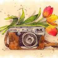 Vintage Camera w Tulips