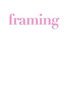 pbn framing.png