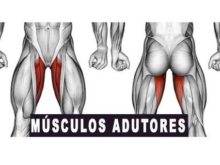 Como hipertrofiar músculos fracos