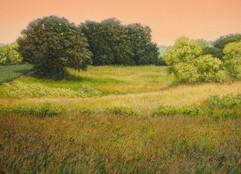 """The Upper Wetland"" by Randall Bennett"