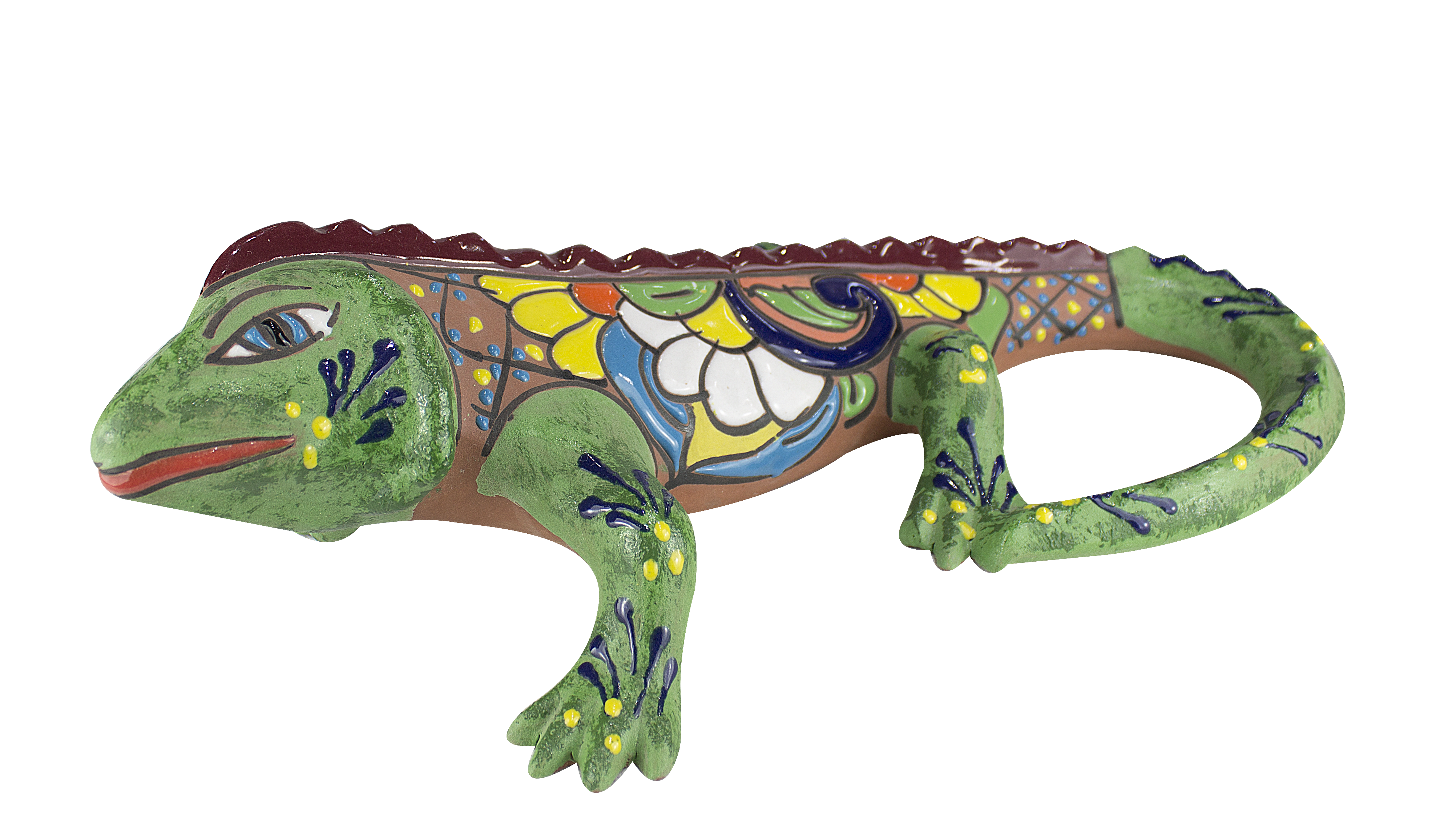 Iguana Mediana