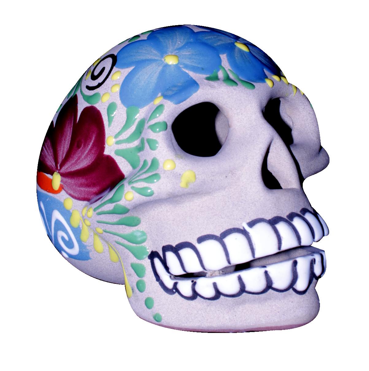 Cráneo Mediano