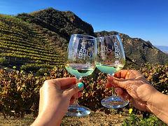 malibu-wine-safaris.jpg