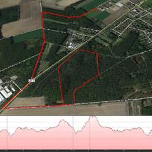 5,5km Volkslauf