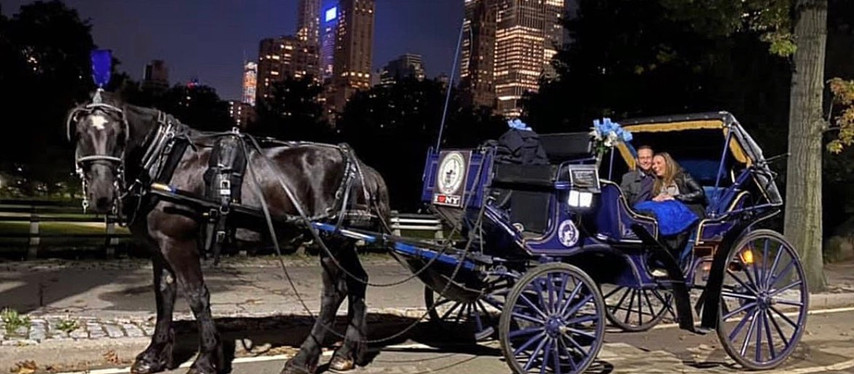 Spring Central Park Horse Carriage Rides in New York City!