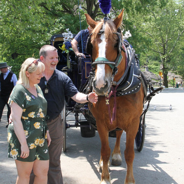 Central Park Horse Carriage Rides | New York, NY | NYC Horse Carriage Rides