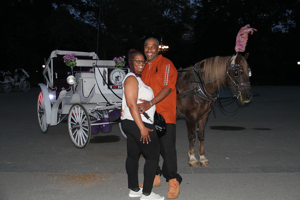 Central Park Carriage Rides on a Summer Night in NYC