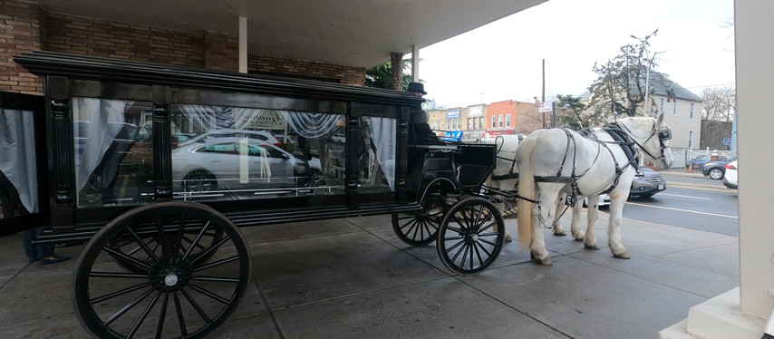 Funeral Horse Carriage Rental Services