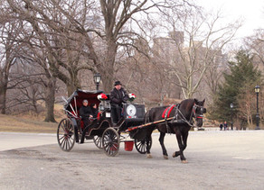 Central Park Carriage Rides in March!