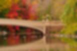 central park carriage rides bow bridge central park new york