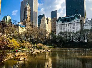 NYC Horse Carriage Rides | Tours and Prices | Central Park Carriage Rides | New York City, NY | Reservation Required | Short Tour | Photo Stop | 25 Minutes