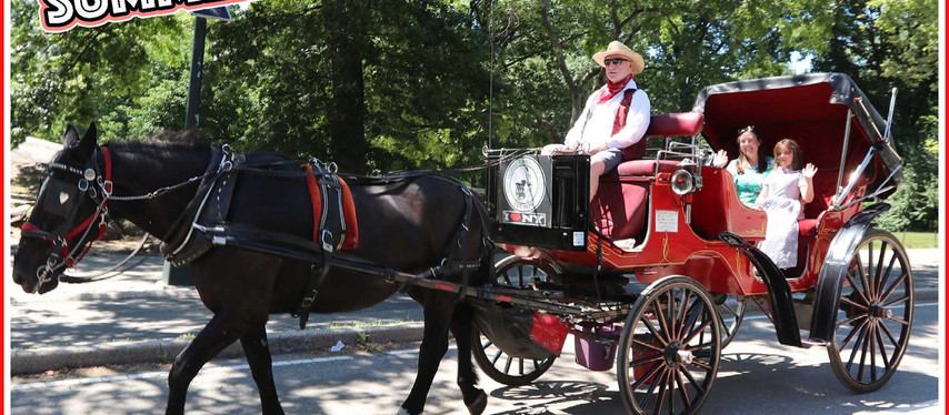 SUMMER SALE! ANY CENTRAL PARK CARRIAGE TOUR!