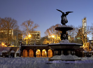 NYC Horse Carriage Rides | Tours and Prices | Central Park Carriage Rides | New York City, NY | Reservation Required | Holiday Tour | 55 Minutes