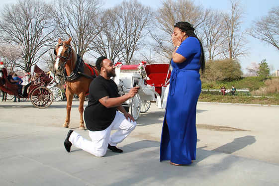 surpirse-proposal-central-park-carriage-ride-nyc