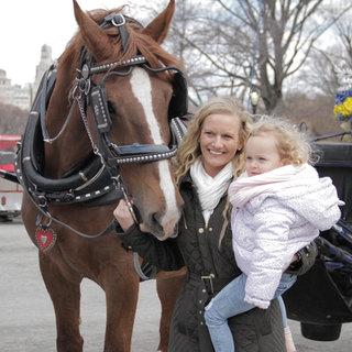 Big Red (Biggest Horse in NYC)