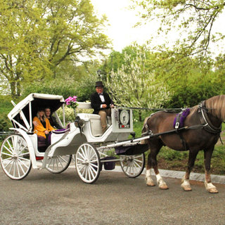 Central Park Carriage Rides | NYC Horse Carriage Rides EST.1979