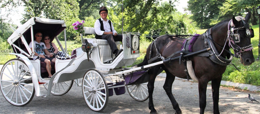 Traditional Central Park Carriage Rides!