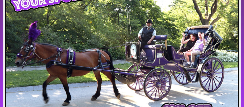 VOTED #1 CENTRAL PARK CARRIAGE RIDES