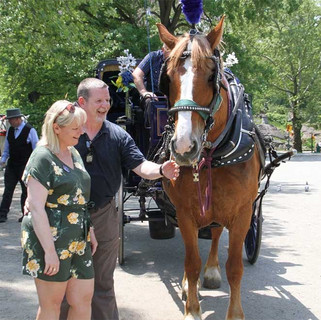 Central Park Carriage Rides in NYC