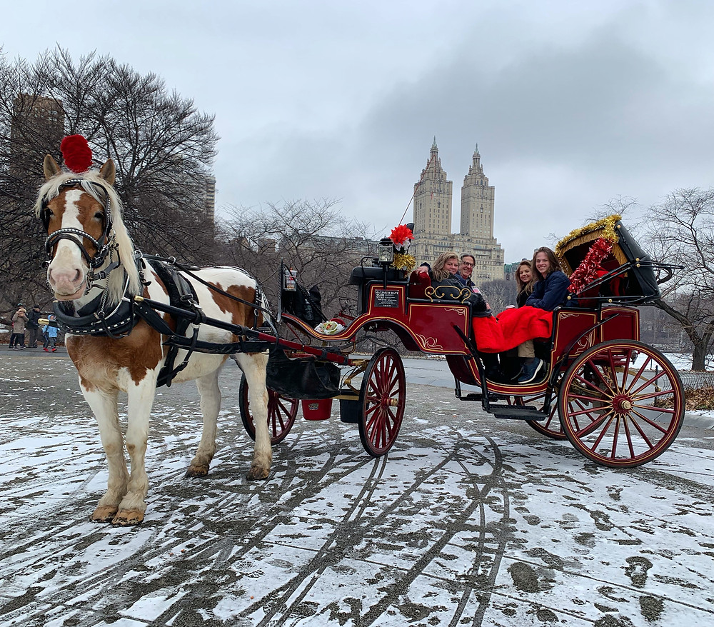 Central Park Horse Carriage Rides in NYC during Winter Season. NYC Horse Carriage Rides proudly serving Central Park since 1979.  Reserve your enchanting carriage ride in Central Park today with the #1 voted Central Park Carriage Ride company in NYC!