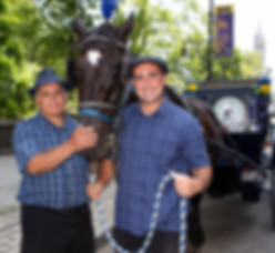 central park horse carriage rides in nyc with reputable family-owned company since 1979 - voted #1 central park carriage rides in new york city
