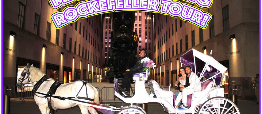 MAGICAL NYC ROCKEFELLER HORSE CARRIAGE TOURS