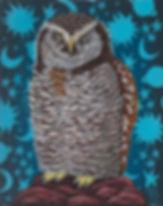 Marisa Ray Northern Hawk Owl bird painti