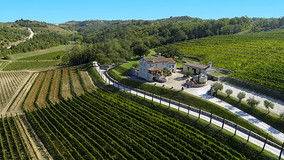 Mala vinska početnica: hrvatske vinske regije