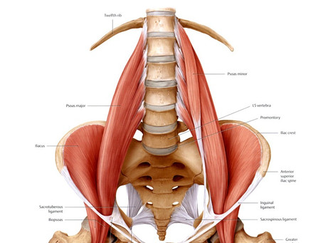 The muscle of the soul, the Psoas