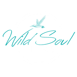 Wild Soul Films Home.png