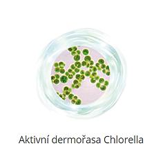 chloreolla.png